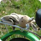 Gepäckverteilung bei der Fahrradtour